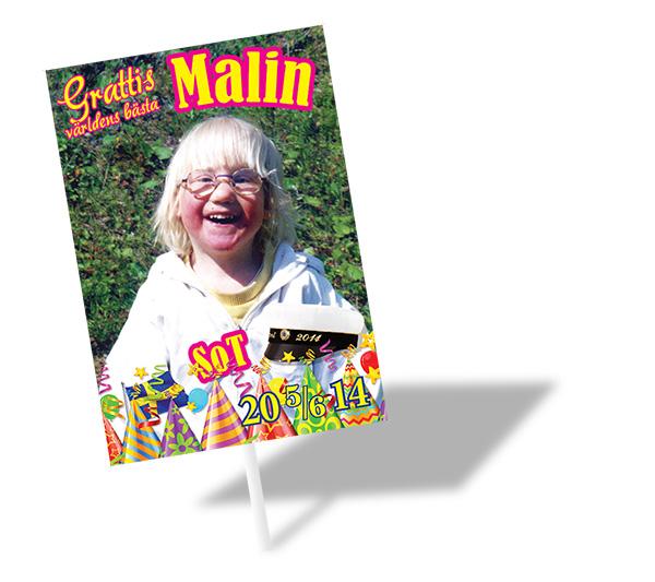 Malin-studentskylt2014_2_600